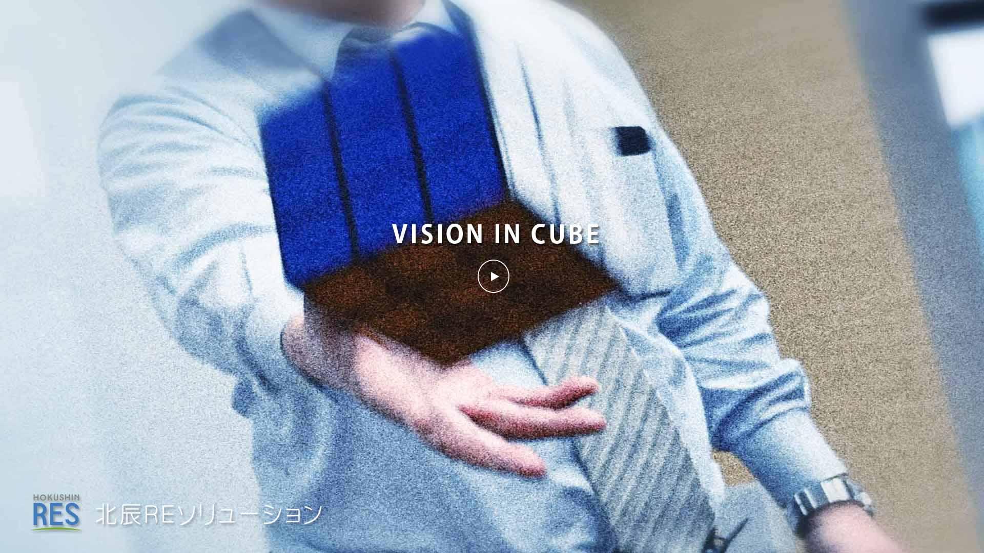 hres_vision